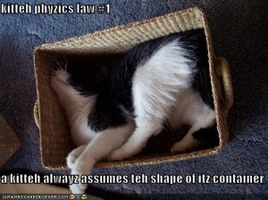 funny-pictures-cat-assumes-shape-of-box-he-is-in