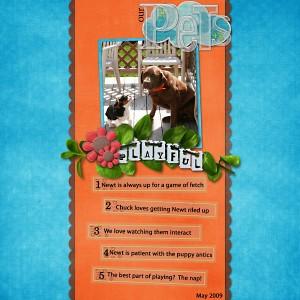 our-pets-playful-web