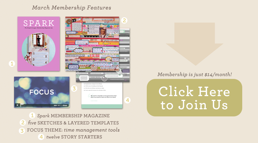 membership_gallerypage_0314