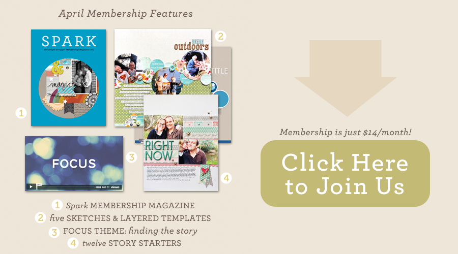 Premium Membership at Simple Scrapper