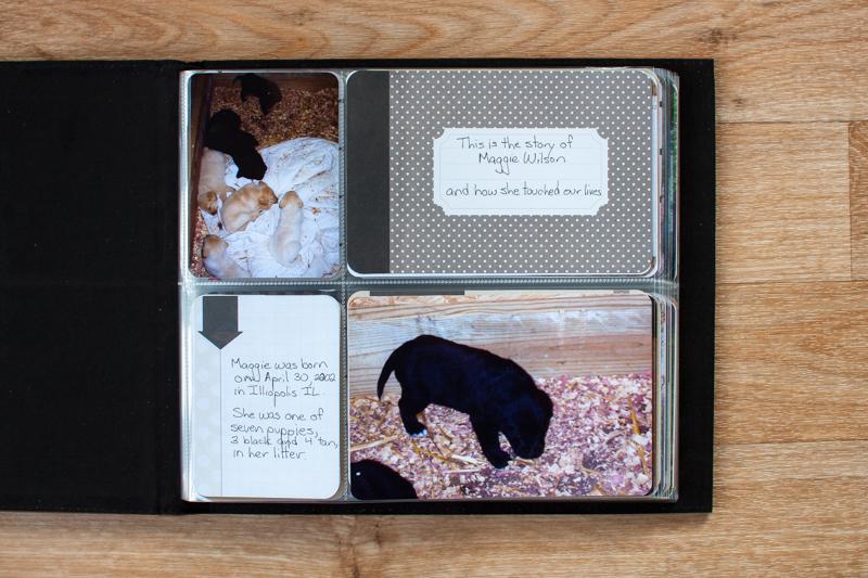 Scrapbooking Pets Project Life Mini Album Simple Scrapper