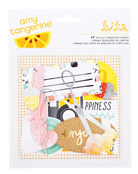 American Crafts - Amy Tangerine Collection - Stitched - Ephemera