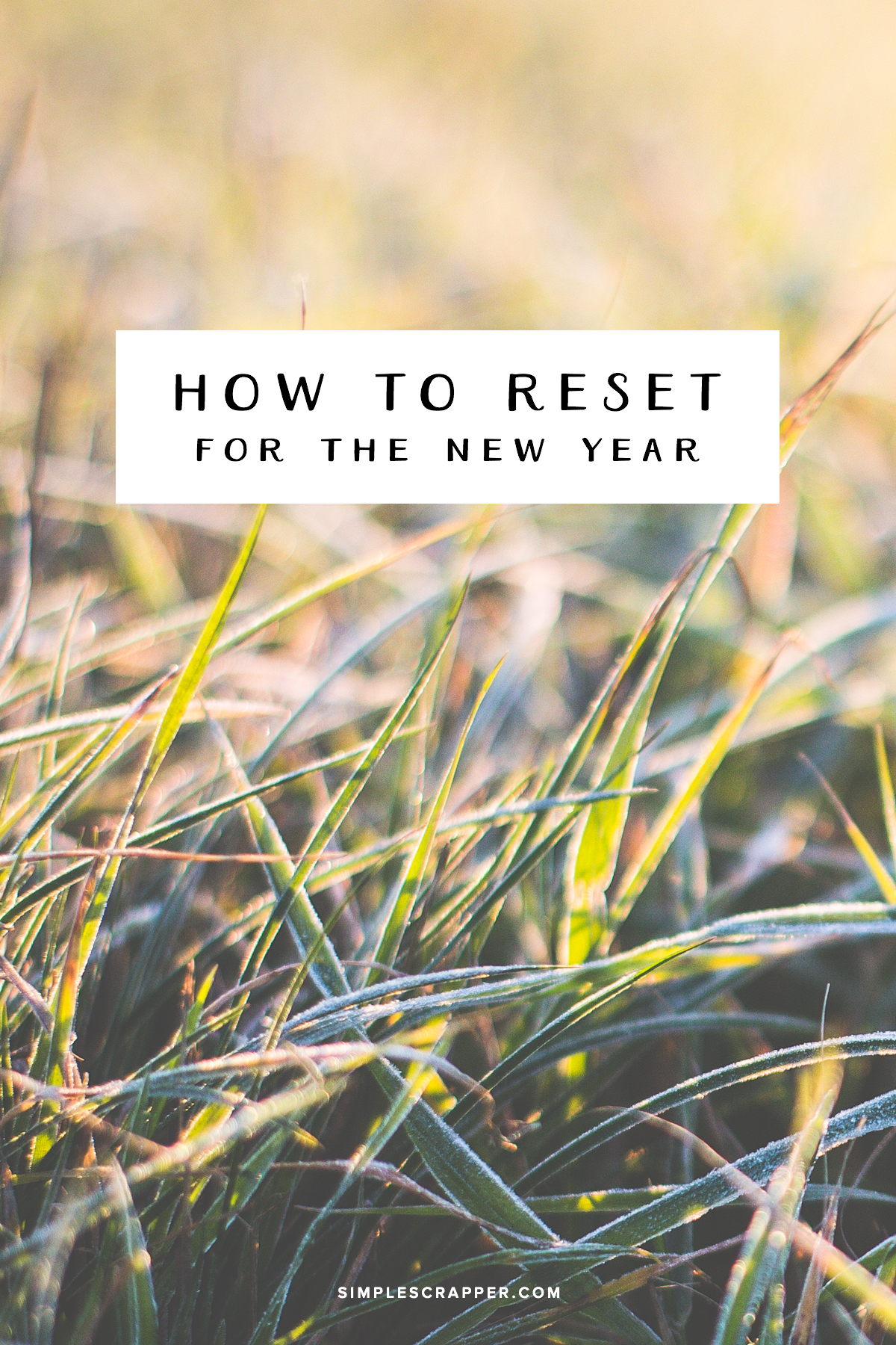 How to Reset Your Creativity with Intention for the New Year